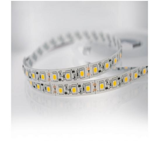 LED 5050-PROFESSIONAL-12V-IP20
